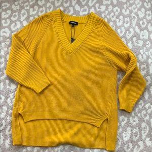 Express oversized v neck sweater